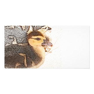 duckling head sketch bird design baby duck picture card