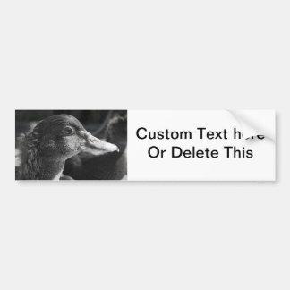 duckling head wet beak bw bird farm animal bumper sticker