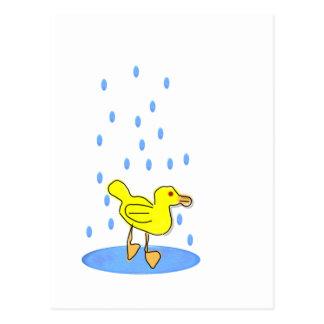 Duckling In Water Postcards