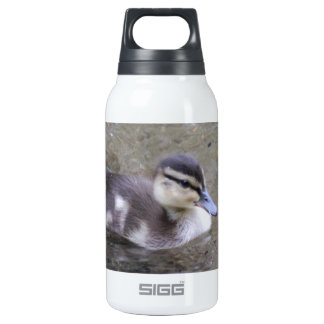 Duckling Insulated Water Bottle