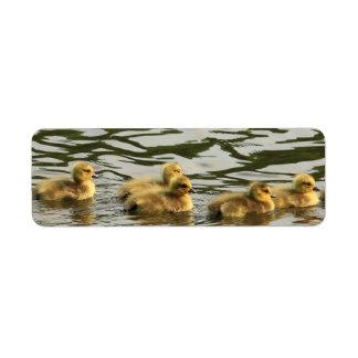 duckling line label