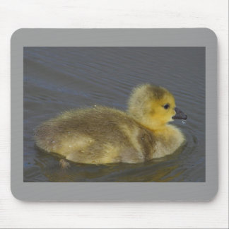 Duckling Mouse Pad