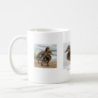 Duckling Mug mug