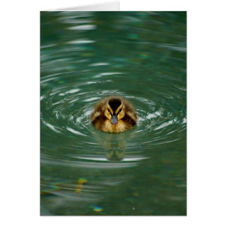 Duckling Note Card