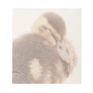 Duckling Notepad