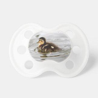 Duckling Pacifier