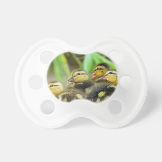 Duckling Pacifier ~ Kimberly P-Chadwick