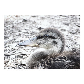 Duckling Painting Photograph Card