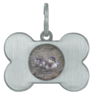 Duckling Pet ID Tag