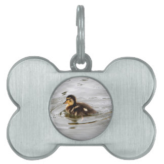 Duckling Pet Name Tag