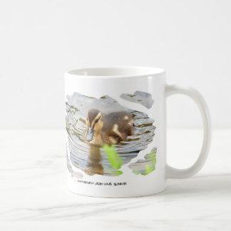 DUCKLING - photo Jean Louis Glineur Coffee Mug