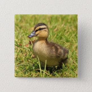 Duckling Pinback Button
