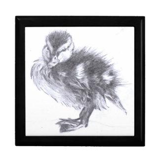 Duckling Sketch Jewelry Box