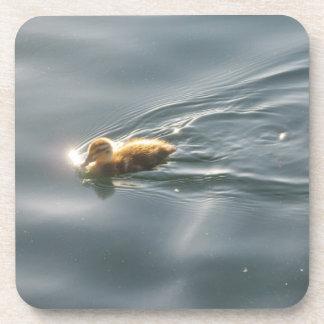 Duckling Swimming Beverage Coaster