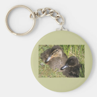 Ducklings Basic Round Button Keychain