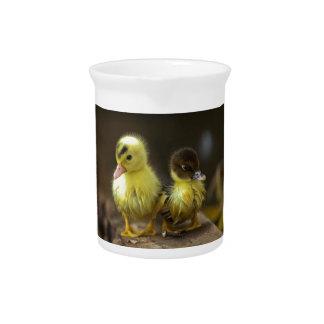 Ducklings Beverage Pitchers