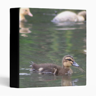 Ducklings Binder