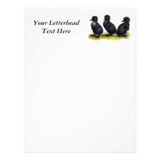 Ducklings Black Cayuga Letterhead