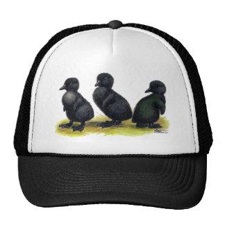 Ducklings Black Cayuga Trucker Hat