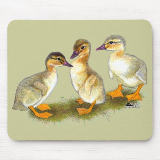 Ducklings:  Buff Orpingtons Mouse Pad