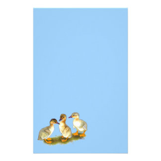 Ducklings:  Buff Orpingtons Stationery