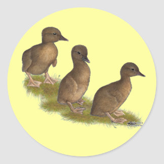 Ducklings Chocolate Runners Stickers