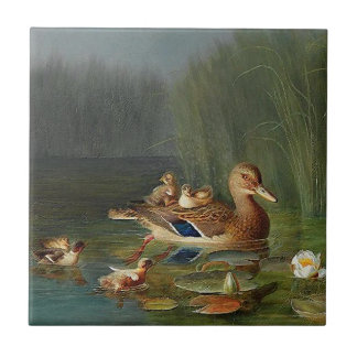 Ducklings Duck Mama Animals Pond Flowers Tile