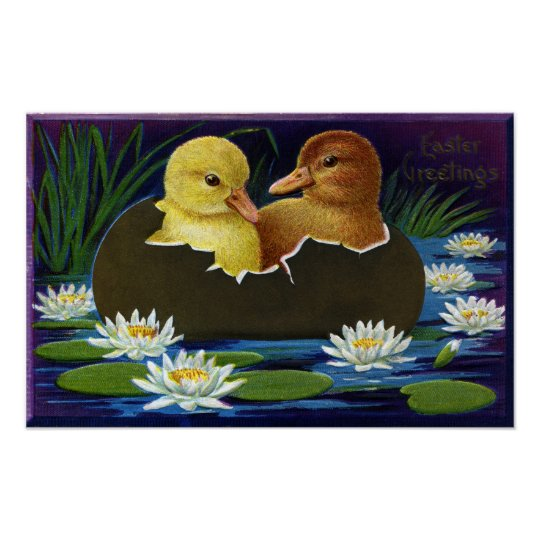 Ducklings in Eggshell Boat with Water Lilies Poster