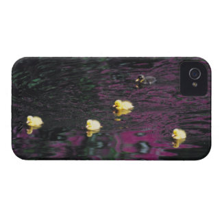ducklings iPhone 4 Case-Mate case