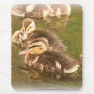 Ducklings Mousepad