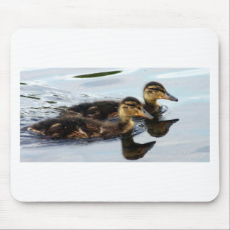 ducklings mouse pad