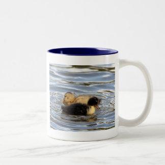 Ducklings Coffee Mugs