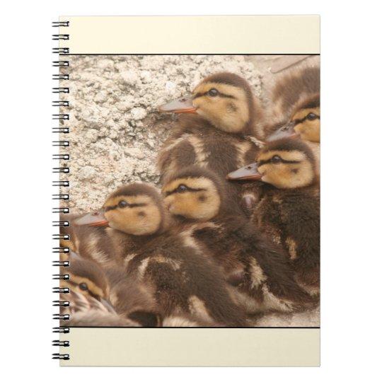 Ducklings Notebook