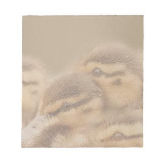 Ducklings Notepad