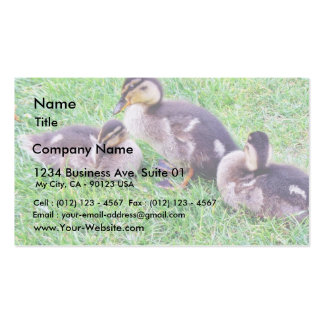 Ducklings On The Grass Business Card