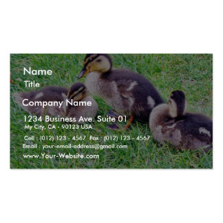 Ducklings On The Grass Business Cards