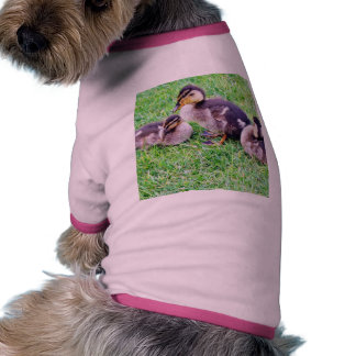 Ducklings On The Grass Dog Clothes