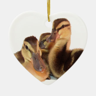 Ducklings Ornament