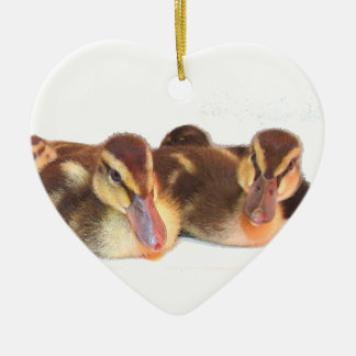 Ducklings Ornament