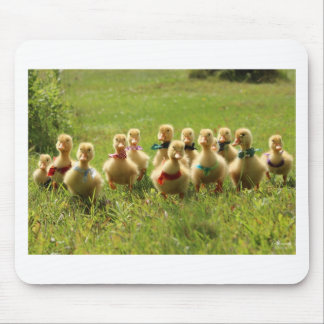 Ducklings with Bandanas Mouse Pad
