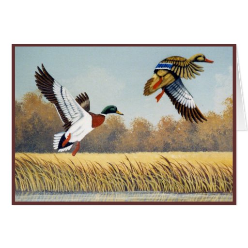 Ducks #1 tarjeta de felicitación