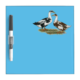Ducks Ancona Pair Dry-Erase Board
