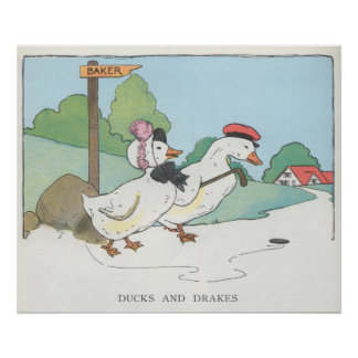 Ducks and Drakes Poster