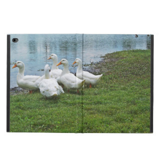 Ducks At Lake Mingo Powis iPad Air 2 Case
