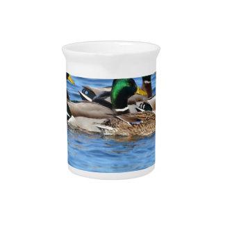 ducks beverage pitcher