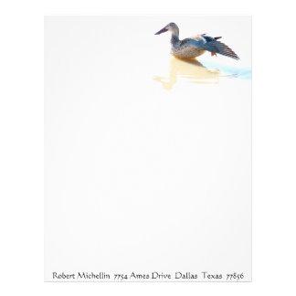 Ducks Birds Animals Wildlife Photography Letterhead