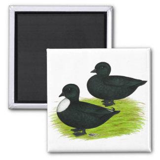 Ducks:  Black Calls Fridge Magnet