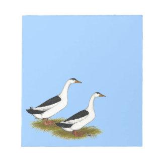 Ducks:  Black Magpies Memo Notepads