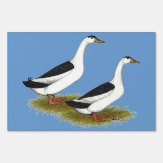 Ducks:  Black Magpies Yard Sign