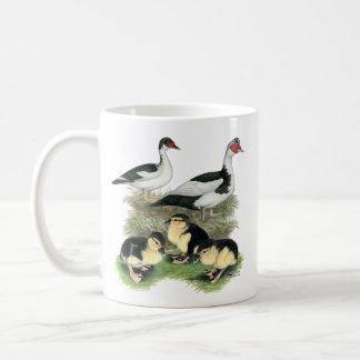 Ducks Black Pied Muscovy Family Classic White Coffee Mug